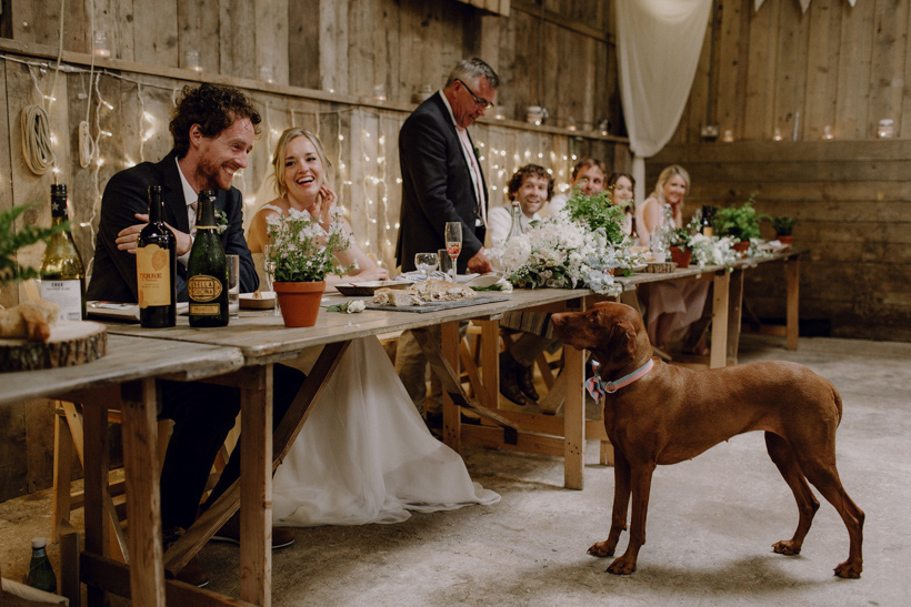 devon wedding photographer south milton barn